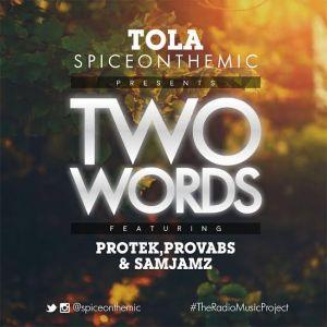 tola-two-words-protek-samjamz-provabs